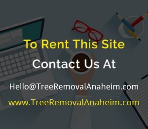 Tree Removal Anaheim